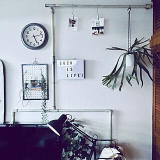 男性40歳の家族暮らし2DK、有孔ボードのパーテーションに関するshi_ge_toさんの実例写真