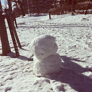 、雪に関するさんの実例写真