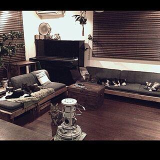 リビング/野良を想うと辛い/猫バカ部/ねこ部/DIY...などのインテリア実例 - 2014-12-14 23:29:07