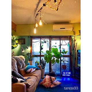 クッションカバー ニトリ/ウンベラータ/水色の壁/流木照明DIY/グリーンのある暮らし...などのインテリア実例 - 2019-04-15 21:07:12