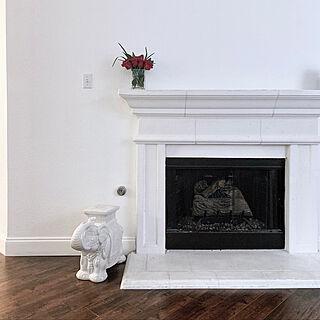 Fireplace/リビングのインテリア実例 - 2019-07-03 03:04:29