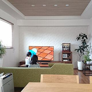 部屋全体/暮らしの一コマ/観葉植物/観葉植物のある暮らし/かぶと飾り...などのインテリア実例 - 2018-03-18 10:53:23