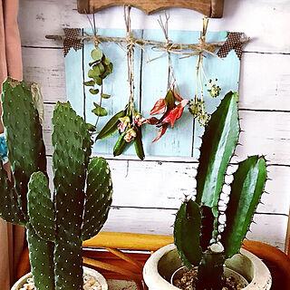 女性家族暮らし4LDK、ダイソー板壁風リメイクシートに関するharuさんの実例写真