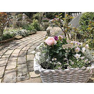 ガーデンピックの人気の写真(RoomNo.2454330)
