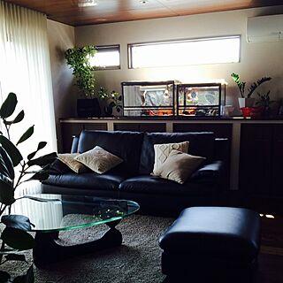 女性42歳の家族暮らし4LDK、アタシが可愛いて思うもの達♡に関するyukiさんの実例写真