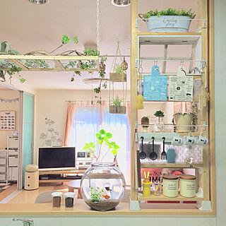 女性家族暮らし4LDK、水槽ディスプレイに関するmiyuさんの実例写真