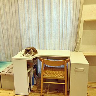 猫/猫スペース/ねこと暮らす。/ねこと暮らす/机のインテリア実例 - 2020-07-23 07:34:58