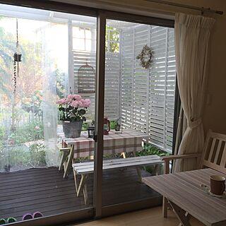 ベッド周り/手作りの庭/ガーデニング/ガーデン/IKEAの1組499円カーテン...などのインテリア実例 - 2016-05-07 20:33:20