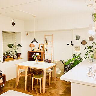 女性50歳の一人暮らし1LDK、観葉植物 キリムに関するmikihawaiiさんの実例写真