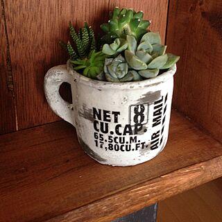 、コンクリート鉢に関するさんの実例写真