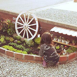 玄関/入り口/ガーデニング初心者/多肉植物/ガーデン雑貨/DIY...などのインテリア実例 - 2015-06-07 20:03:30