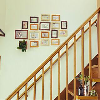 写真を飾る/階段の壁/ダイソーのフォトフレーム/セリアのフォトフレーム/コウモリラン板付け...などのインテリア実例 - 2021-05-13 10:56:33