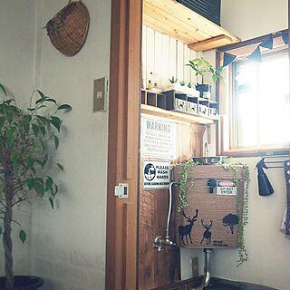 バス/トイレ/ダイソー/セリア/しゃれとんしゃあ会/キャンドゥのフェイク多肉...などのインテリア実例 - 2014-09-07 14:09:55