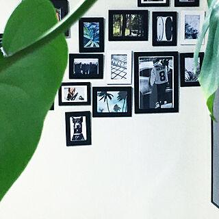 壁/天井/IKEA/観葉植物/多肉植物/カフェ風...などのインテリア実例 - 2017-09-20 17:01:14