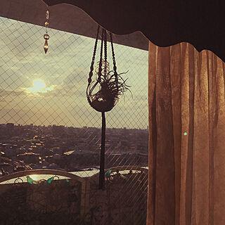 チランジア/プラントハンガー/instagram→haru475/マクラメロープ/バッグ作家...などのインテリア実例 - 2019-11-25 15:52:31