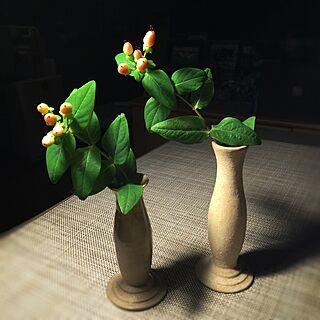 女性家族暮らし、庭のヒペリカムに関するsatochanさんの実例写真