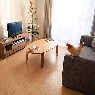 リビング/無印良品/ニトリ/ソファ/IKEA...などのインテリア実例 - 2015-10-19 07:05:31