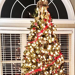 リビング/クリスマス/イベント参加用/クリスマスツリー/クリスマスライト...などのインテリア実例 - 2019-11-25 21:43:22