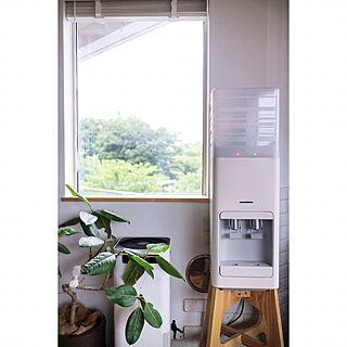 空気清浄機の人気の写真(RoomNo.2920511)