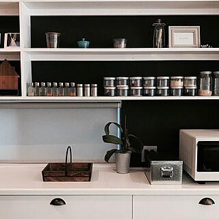 キッチン棚の人気の写真(RoomNo.2510442)