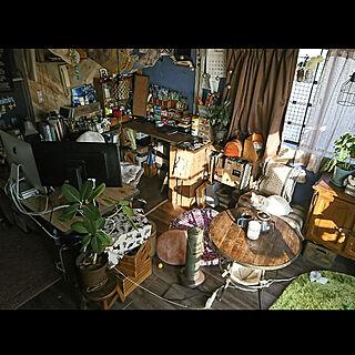 部屋全体/猫/スマートリモコン/Nature Remo mini/賃貸...などのインテリア実例 - 2020-02-13 15:54:26