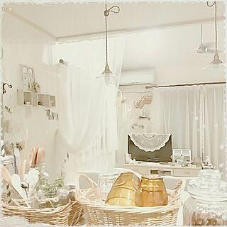 白化の人気の写真(RoomNo.2303798)
