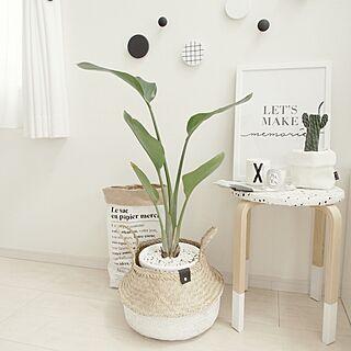 白黒好きの人気の写真(RoomNo.2438251)