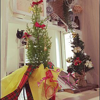 棚/クリスマスツリー/ゴールドクレスト/クリスマスプレゼント/旦那さんからのXmasPresentのインテリア実例 - 2014-12-24 13:05:05