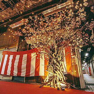 リビング/あるcafe/お花見商店街/白楽/ギャラリーカフェ...などのインテリア実例 - 2017-03-28 02:27:19