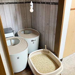 猫トイレ置き場/猫スペース/ねこが好き/ねこと暮らす/猫多頭飼い...などのインテリア実例 - 2020-04-18 08:07:31