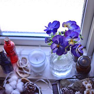 におい対策/癒し空間/お花/ナチュラル/日々の生活を楽しむ...などのインテリア実例 - 2020-05-08 09:07:54