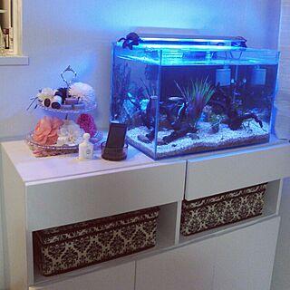 女性36歳の家族暮らし3LDK、お魚柄に関するasamiさんの実例写真