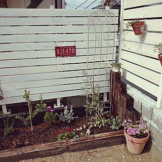 玄関/入り口/ガーデンニング/雑貨/植物/ユーカリ♡...などのインテリア実例 - 2015-03-09 14:52:11