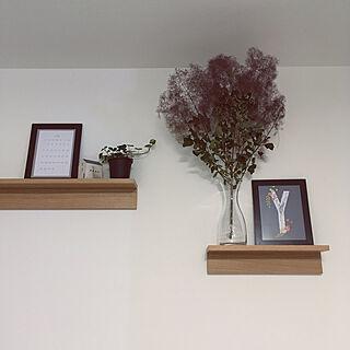観葉植物/Muji/無印良品/壁に付けられる家具/グリーンのある暮らし...などのインテリア実例 - 2019-06-22 21:54:30
