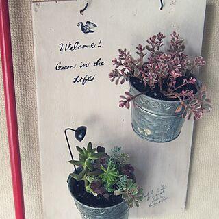 女性家族暮らし3LDK、実は素麺の木箱に関するmisaさんの実例写真