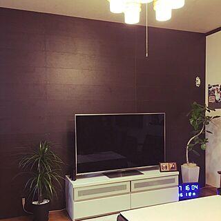 リビング/観葉植物/DIY/ゴムの木/板壁DIYのインテリア実例 - 2016-01-13 12:46:54
