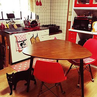 女性家族暮らし3LDK、キッチンくろねこに関するhimeさんの実例写真
