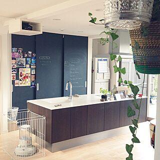キッチン/観葉植物/DIY/IKEAのインテリア実例 - 2014-11-17 11:14:27
