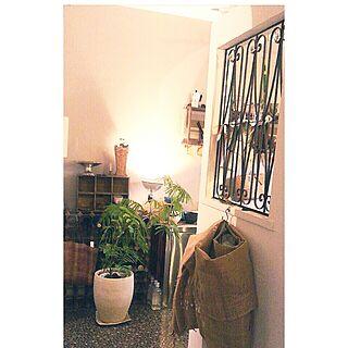 キッチン/照明/植物/green/エバーフレッシュ...などのインテリア実例 - 2014-06-15 19:08:42