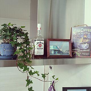 キッチン/観葉植物/カフェ風/西海岸風 インテリアのインテリア実例 - 2016-01-24 09:42:10