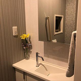 鏡の裏が収納/一階のトイレ/バス/トイレ/トイレ手洗い場/手洗い場...などのインテリア実例 - 2020-10-09 13:15:41