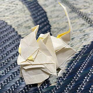 共同作業/おりがみ部/おりがみ/折り紙/ポメラニアン...などのインテリア実例 - 2021-07-14 15:43:28