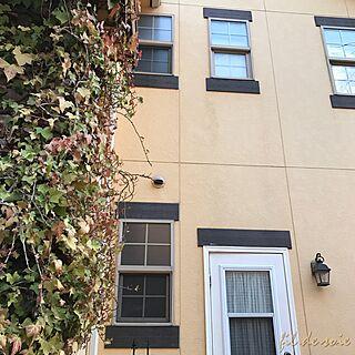 シングルハング窓の人気の写真(RoomNo.2292148)