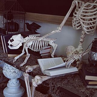 女性38歳の家族暮らし、Restoration Hardwareに関するcallacafeさんの実例写真