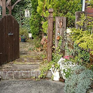 バス/トイレ/2020.4.28☀️/庭/狭い庭/小さい庭...などのインテリア実例 - 2020-04-28 08:02:26