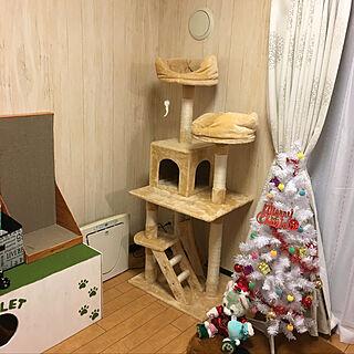 Sachiさんの部屋写真