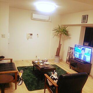 男性38歳の一人暮らし2LDK、ねこが映ってたに関するnoguchiken0102さんの実例写真