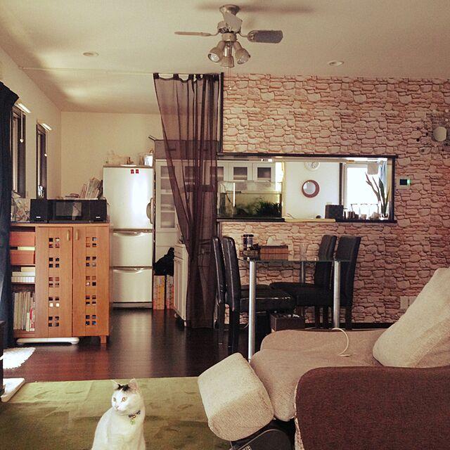Overview,はがせる壁紙のインテリア実例 | RoomClip (ルームクリップ)