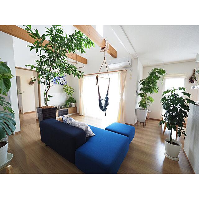 Lounge,観葉植物,無印良品,マリメッコ,北欧,吹き抜け,ハンモックチェア,梁のあるリビング,シンプルナチュラル,カウニステ,ソファベンチ,ソニーモバイル,Xperia Touchのインテリア実例 | RoomClip (ルームクリップ)