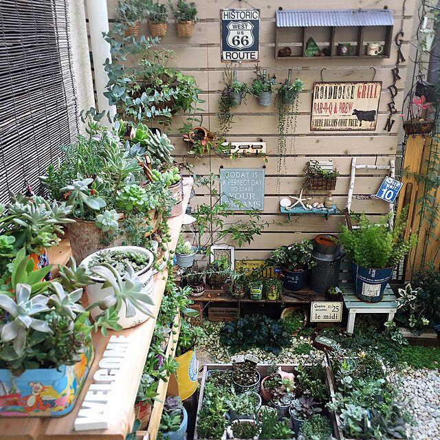 Entrance,植物,雑貨,多肉植物,セリア,ミカヅキモモコ,WOODPRO,コンテスト参加中のインテリア実例   RoomClip (ルームクリップ)